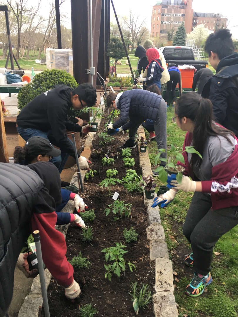 Students plant plants in a raised garden bed