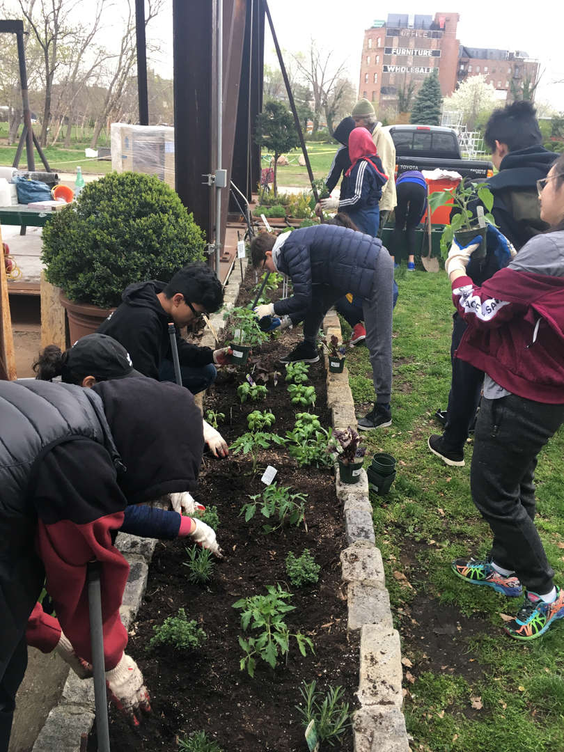 Students gather around a raised garden bed