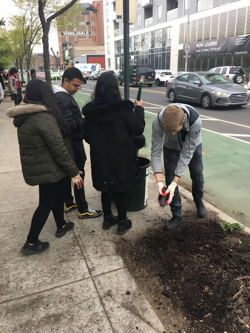 Student holds an unpotted plant in his hands on the sidewalk