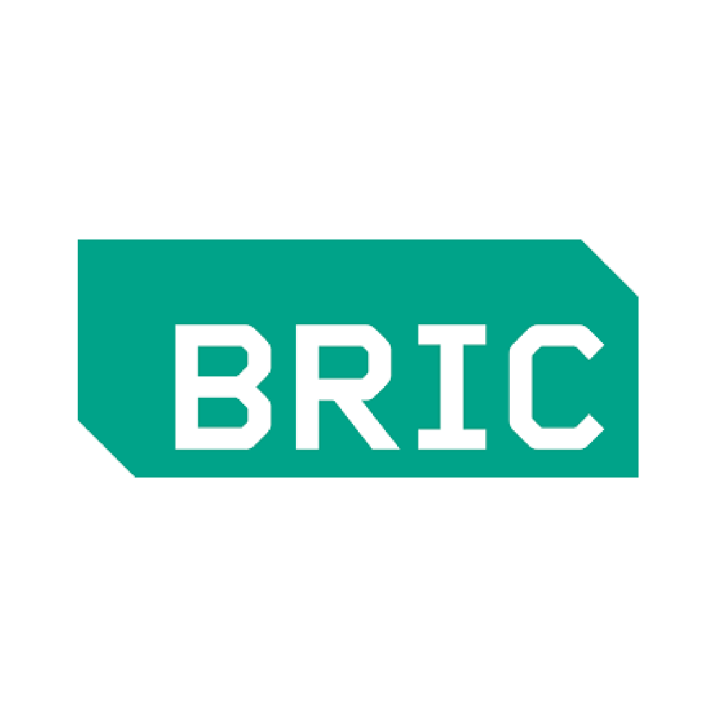 Bric Art icon