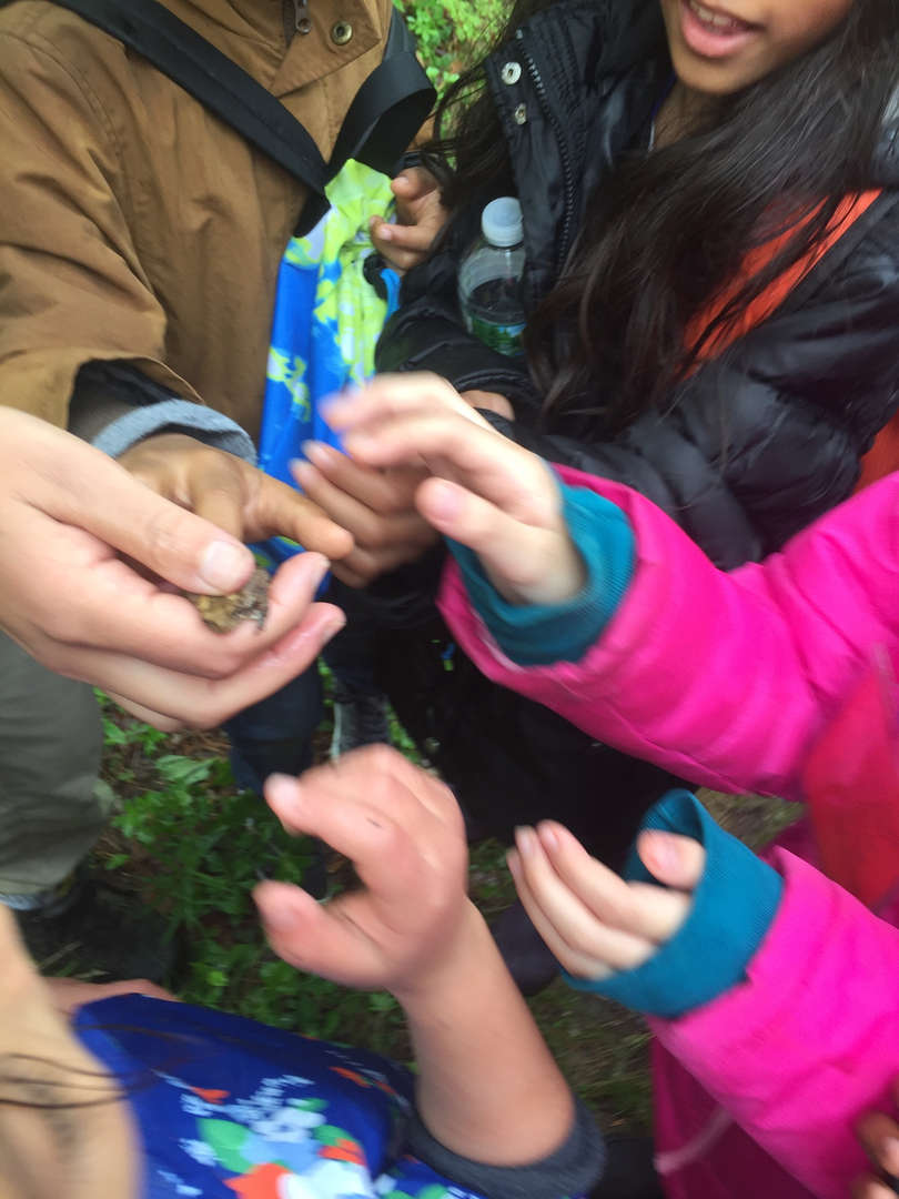 Students examining organic material through inquiry-based instruction