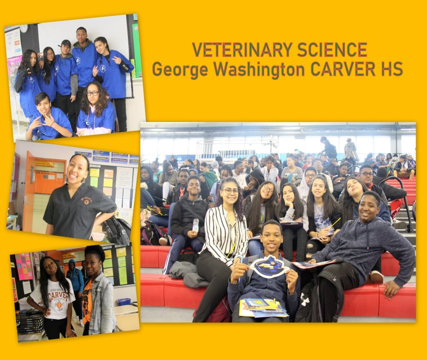 Veterinary Science - George Washington Carver HS: Collage of veterinary students together