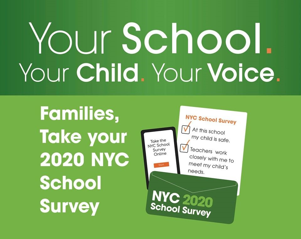 NYC DOE School Survey logo 2020