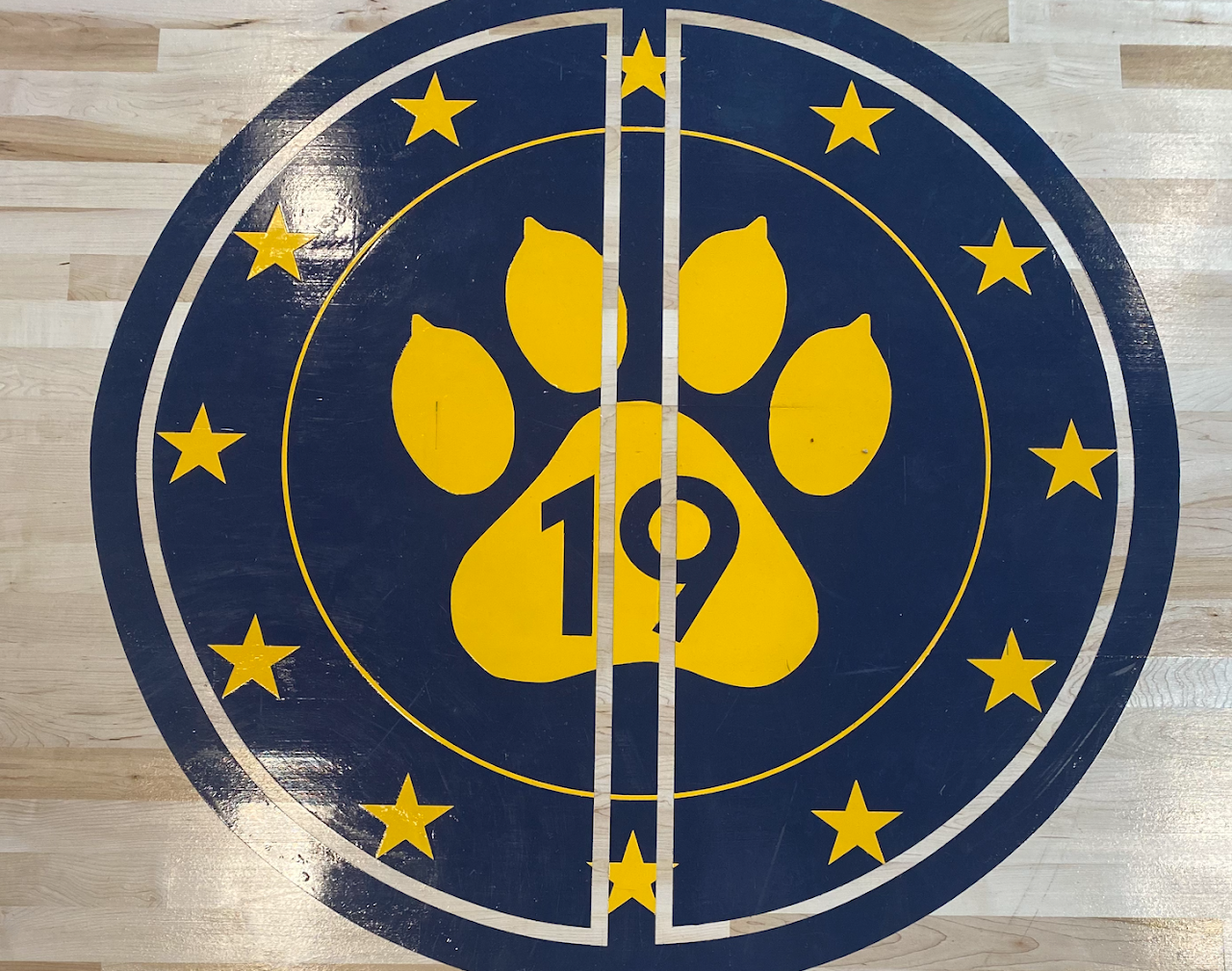 P.S. 19 blue and yellow paw logo on the gymnasium floor