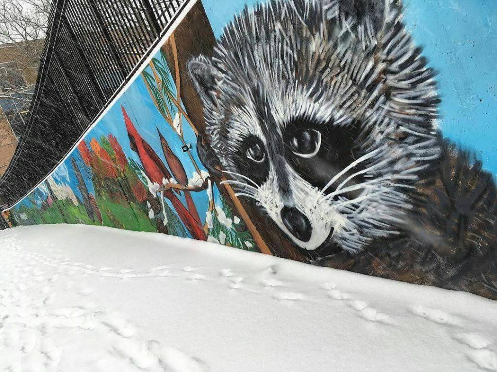 Mosholu Playground Mural of Raccoon
