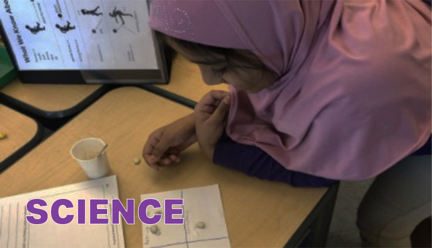 Science. Student working through a science lab experiment