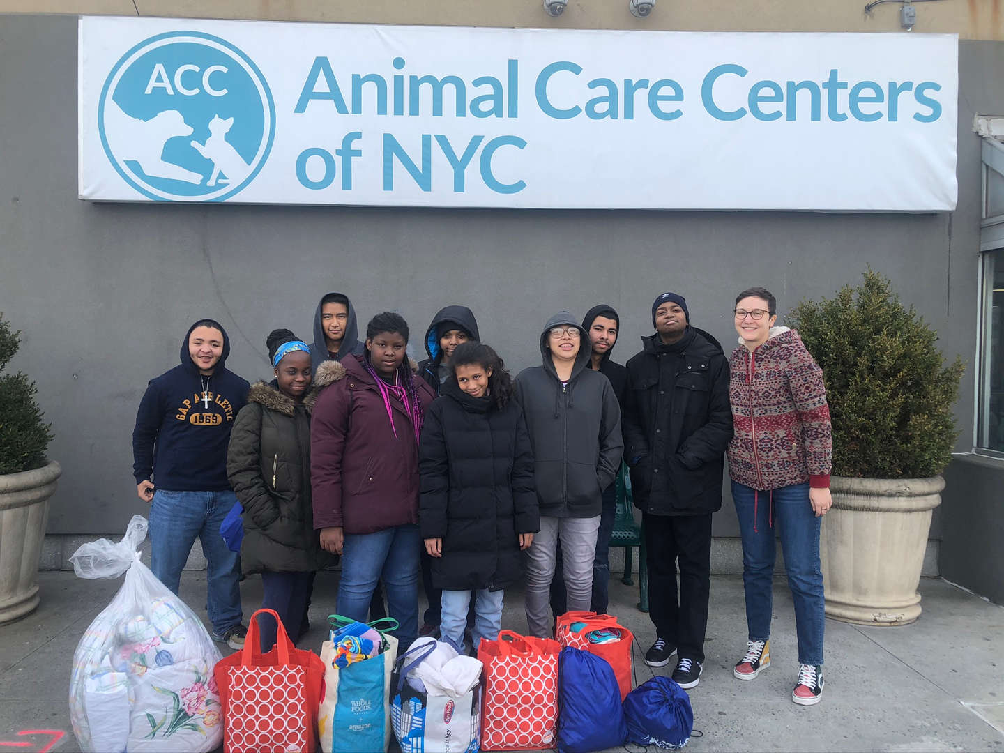 Students volunteer at the Animal Care Center of NYC