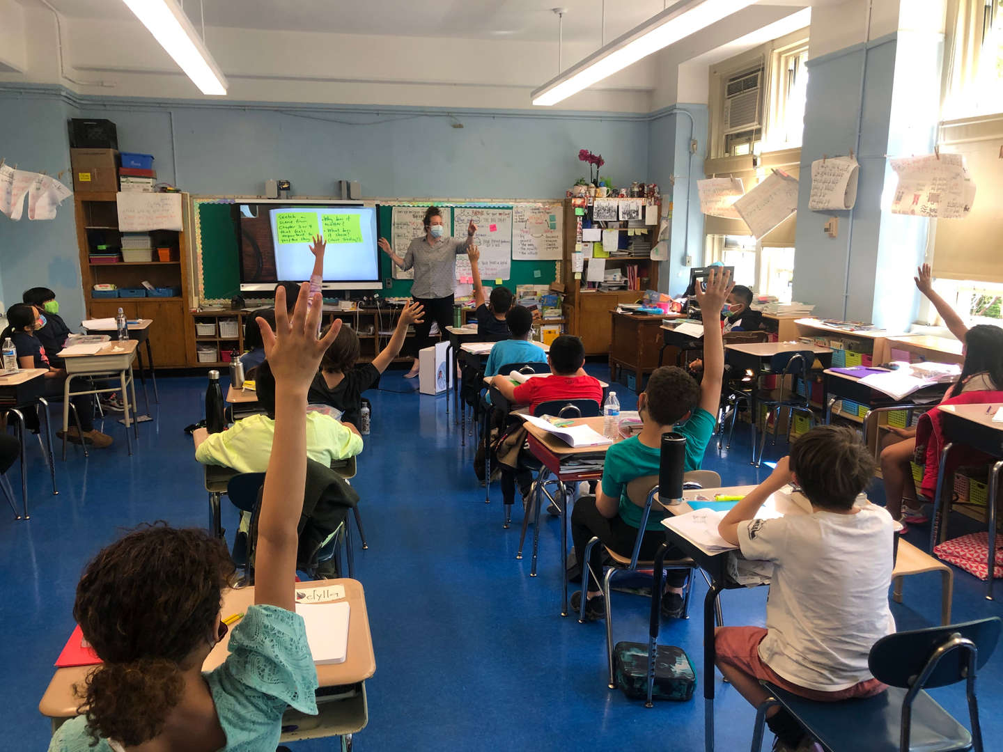 Students raise their hands during class.