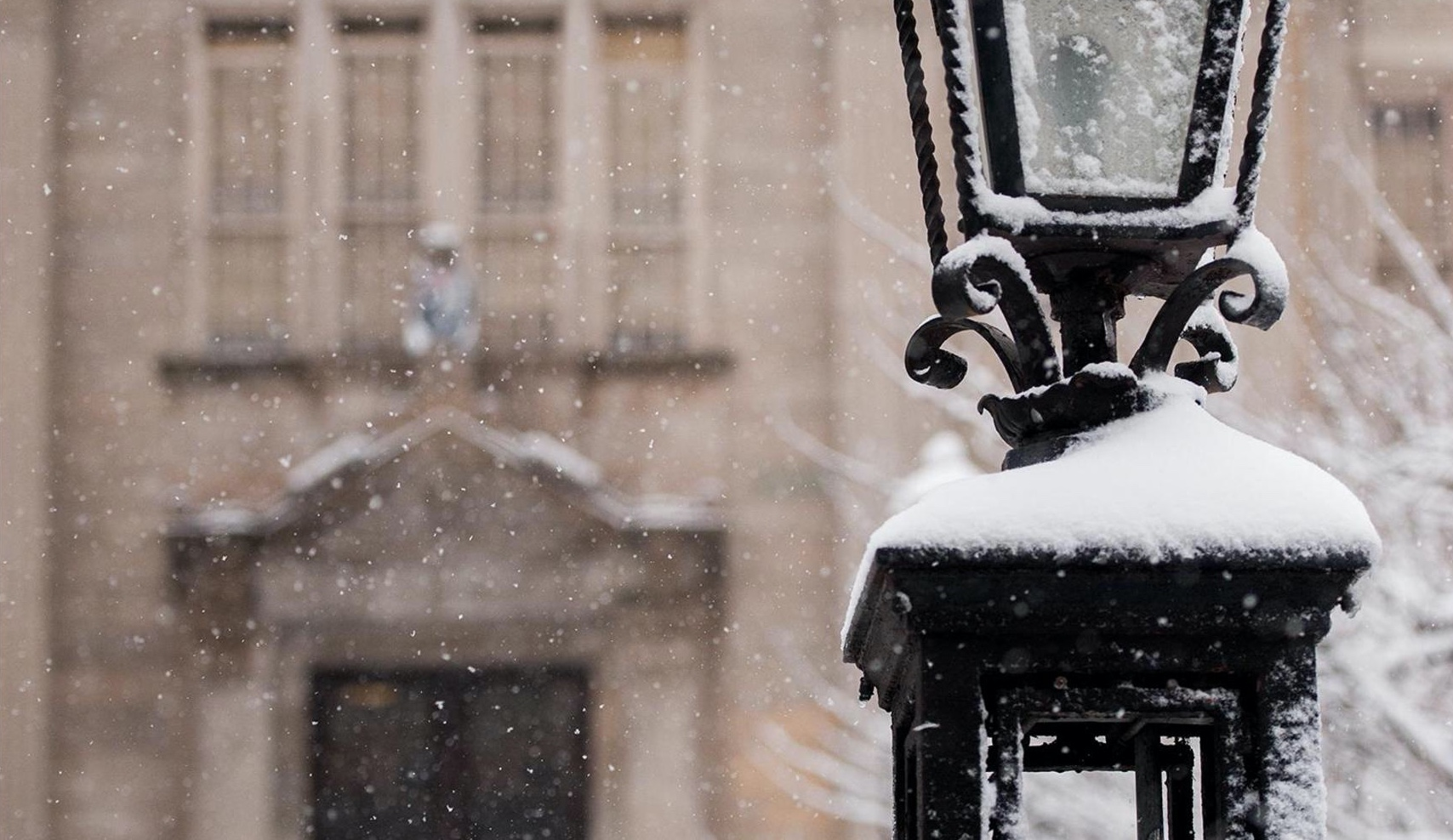 Snow covered lampost.
