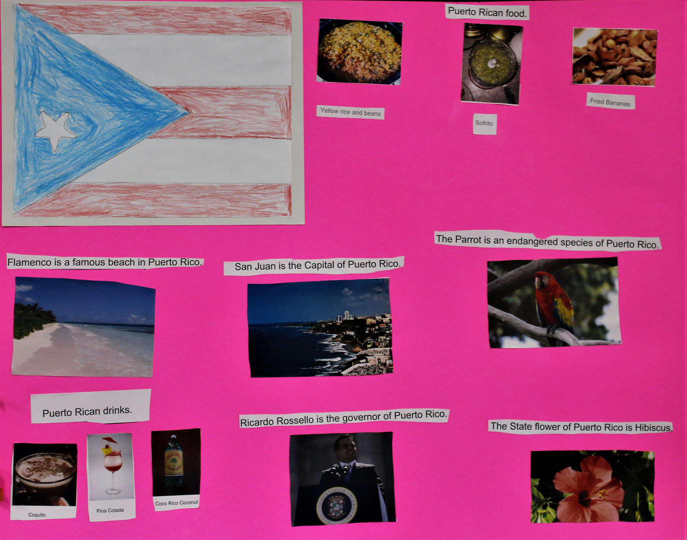 Students who studied Puerto Rico made a poster board about food, habitat and flowers.