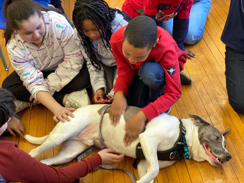 Several children pet Duke the therapy dog.