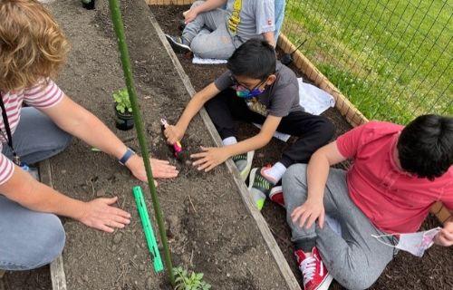 Students digging.