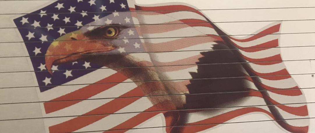 Flag with eagle photo