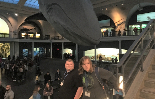 Students with a life sized whale in the background