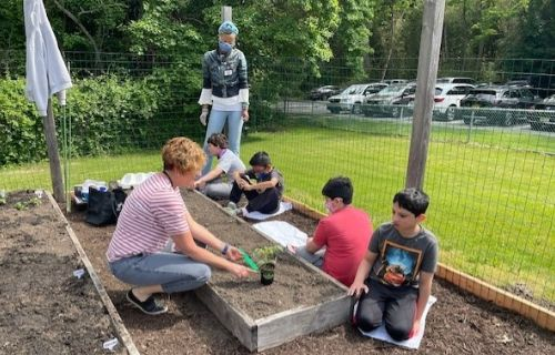 Students and staff gardening.