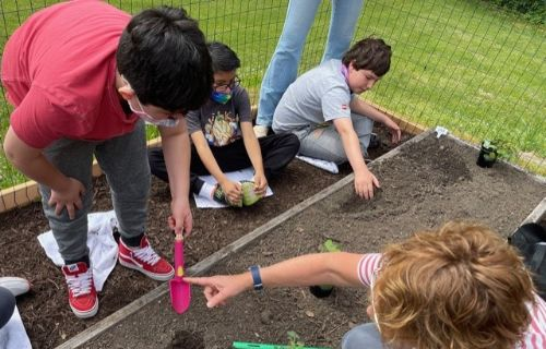 Students and staff caring for the garden.