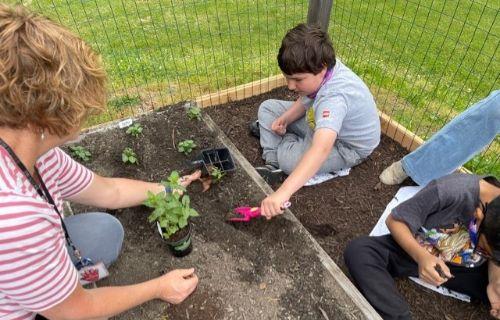 Student planting.