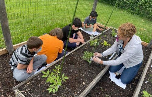 Class working in garden.