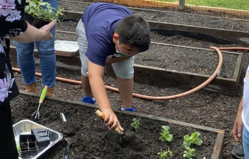 Student digging in the soil.