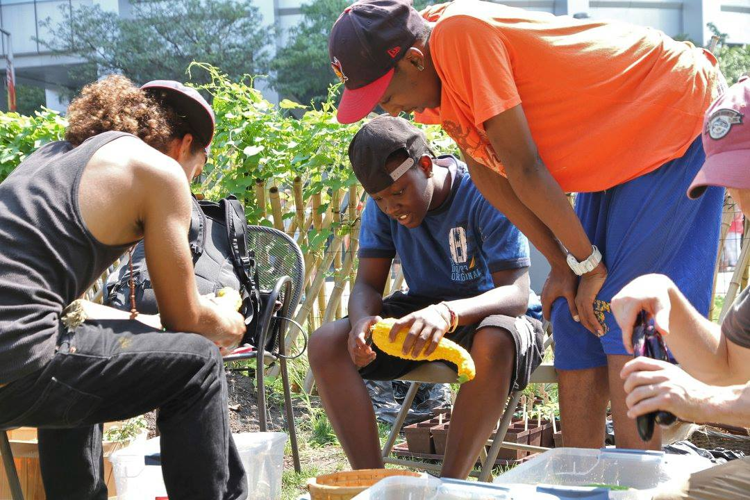 Culinary students experience urban harvesting.