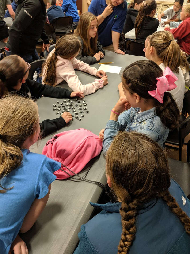 A recent field trip to the Bronx Zoo included a math lesson as students learned how Zoologists count and track different species.