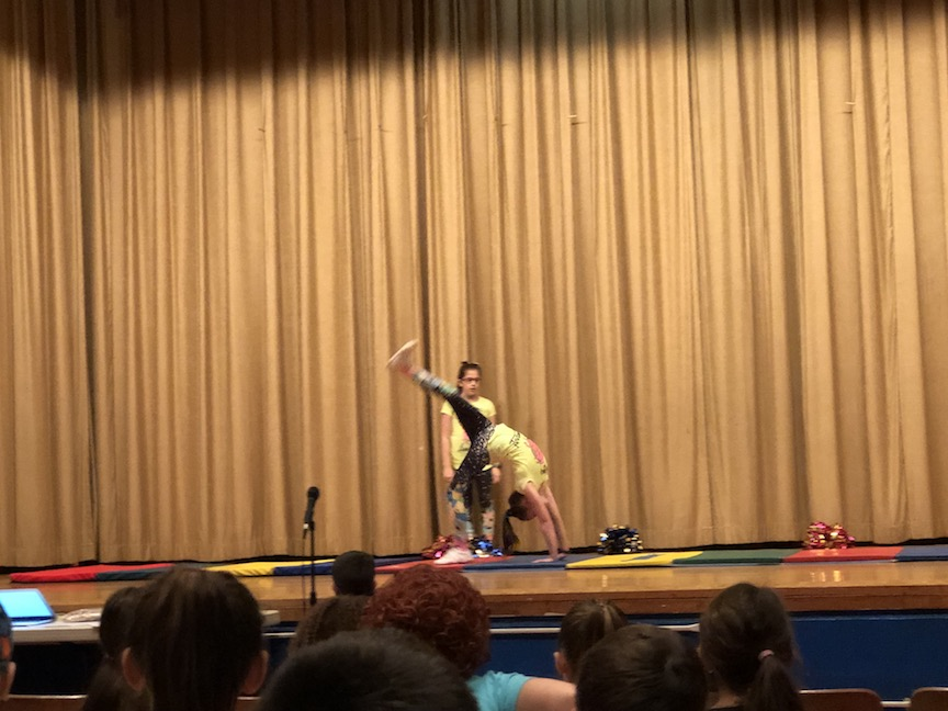 two gymnasts performing