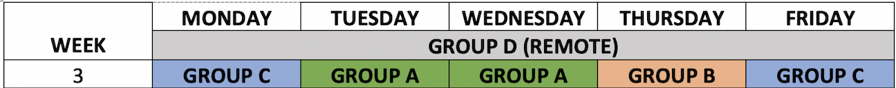 Remote blended learning schedule for week 3